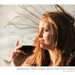 Jack-Russell-Design-Wedderwill-ad-1-web