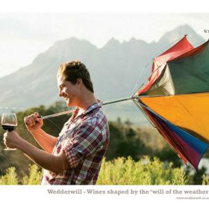 Jack-Russell-Design-Wedderwill-wine-ad-4