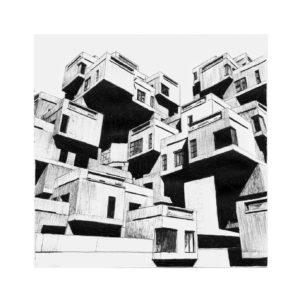 Jack-Russell-Design-Francesca-illustration-12