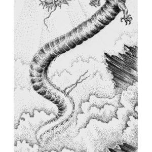 Jack-Russell-Design-Francesca-illustration-18