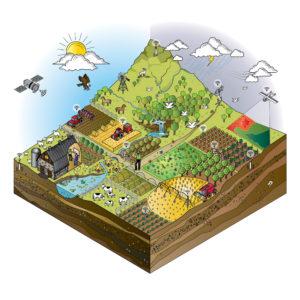 Jack-Russell-Design-My-Smart-Farm-brochure-design-9
