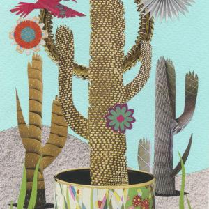 Or10-Desert-Plumage-5-9x14cm-sml